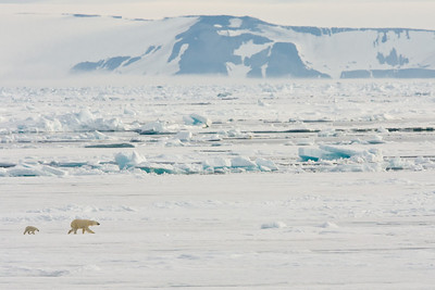 Svalbard Arctic Expedition