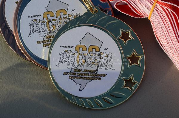 NJ State Freshman JV  XC Champs 11-6-2013