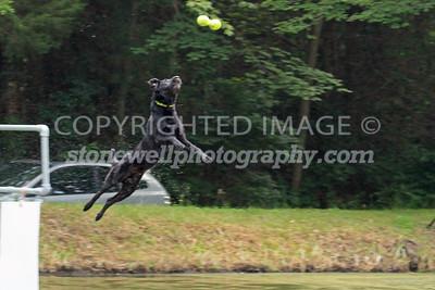 Cross Creek Farm NADD/AKC June 2015
