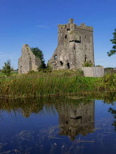 16 Sragh Castle on Grand Canal Greenway.jpg