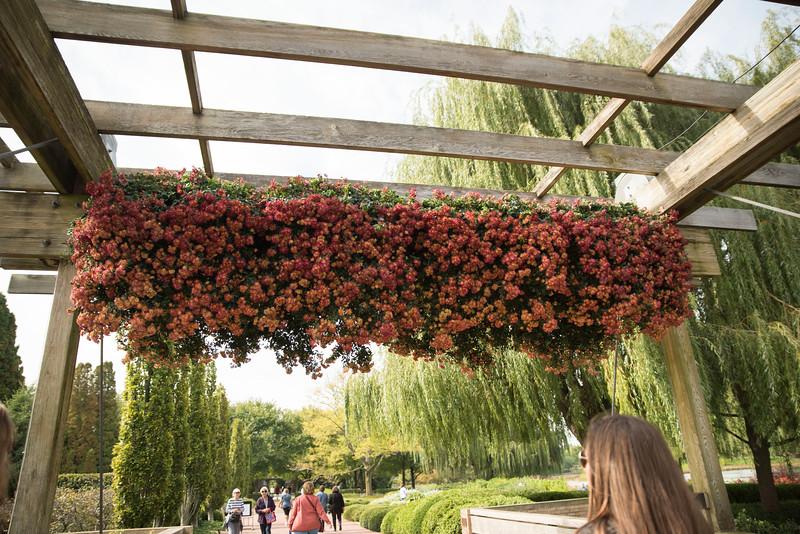 Chicago Botanic Garden 002.jpg