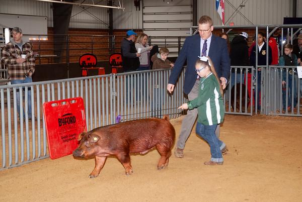 SW District Swine Day 2
