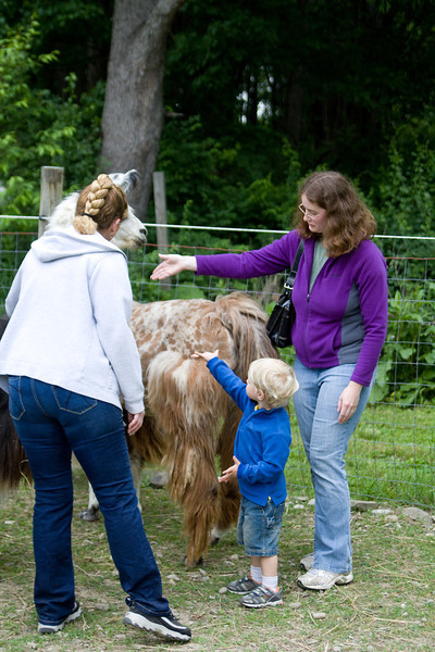 Quinton and Deb pet a llama