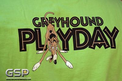 Greyhound Play Day 2013