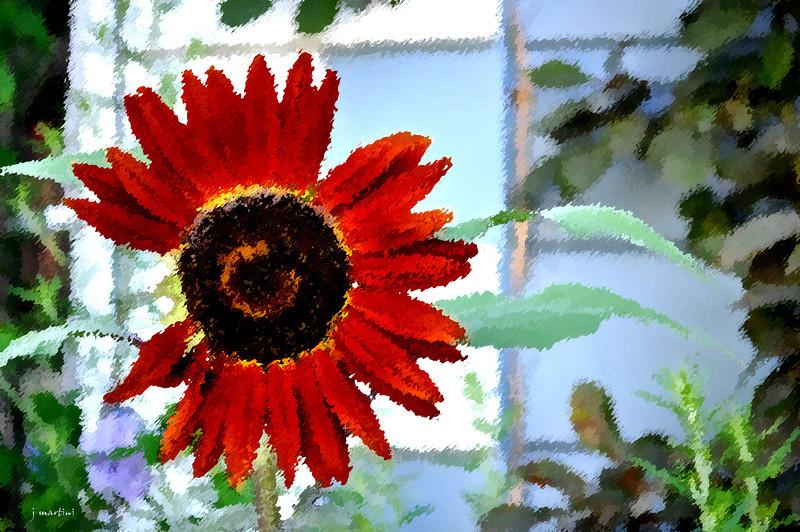 dream gardens 22 2-5-2011.jpg