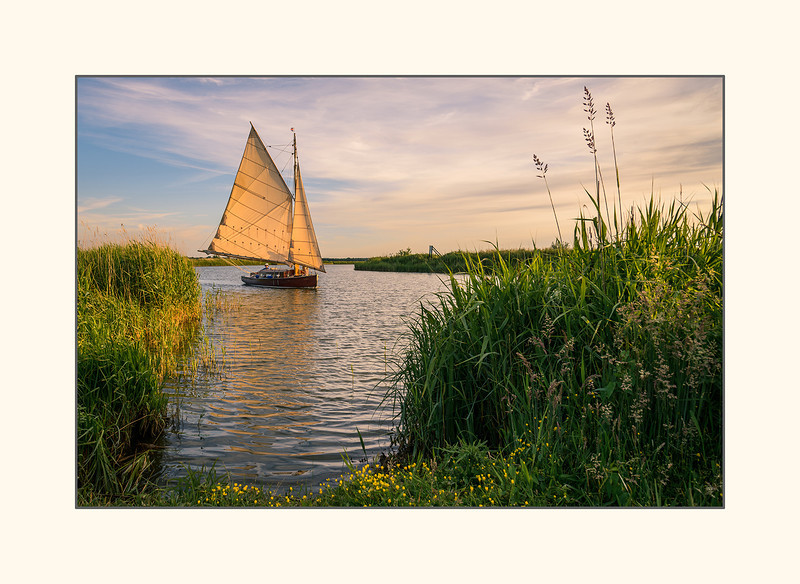Sailing into the sun - Norfolk Broads.jpg