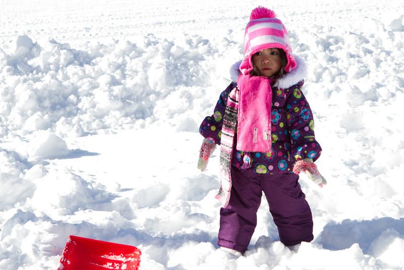 Snow2014-12.jpg