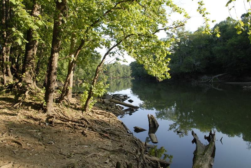 River's Alive