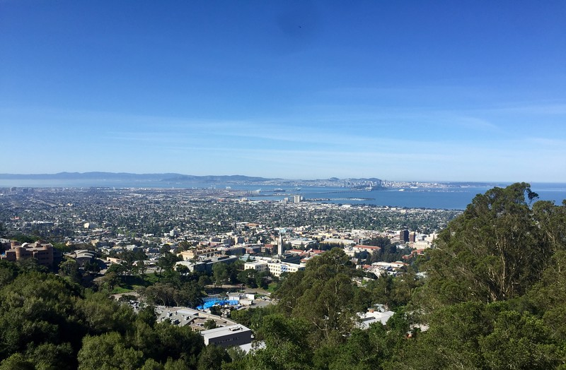 From Berkeley Fire Trail overlooking the univercity