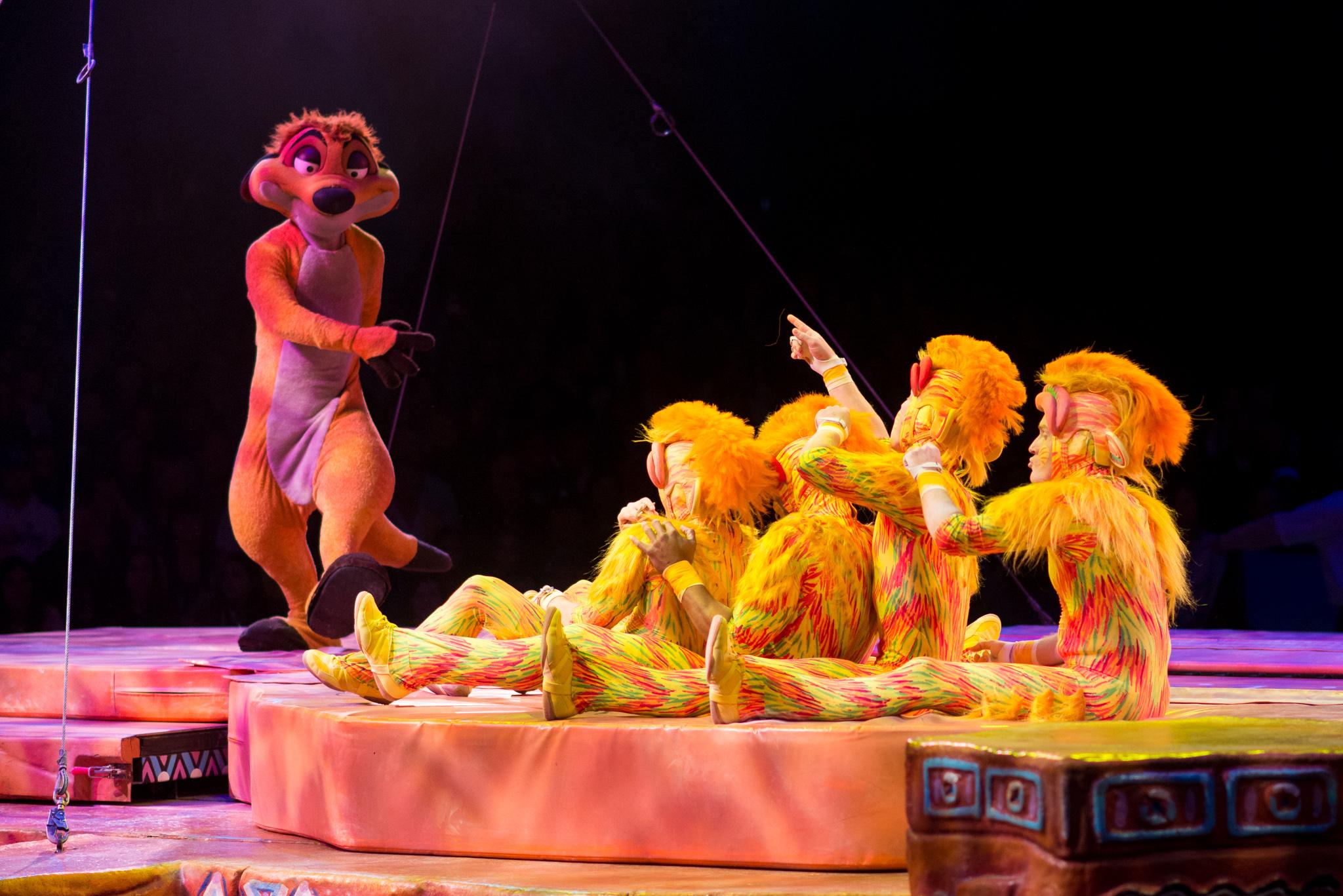 Tumble Monkeys at Disney's Animal Kingdom