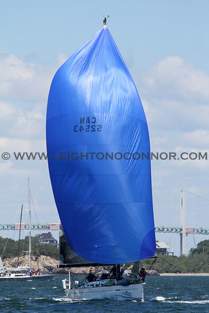 2012 Newport to Bermuda Race