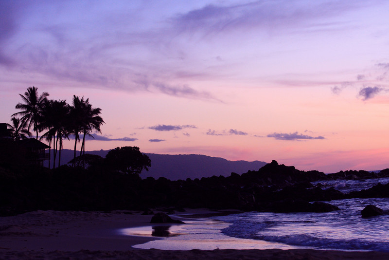 Oahu 371_Purple