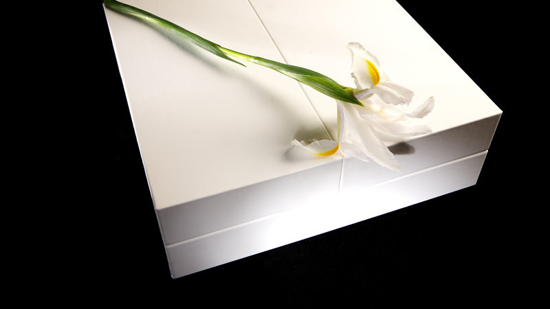 Wedding Book By © Marcosasia.mov