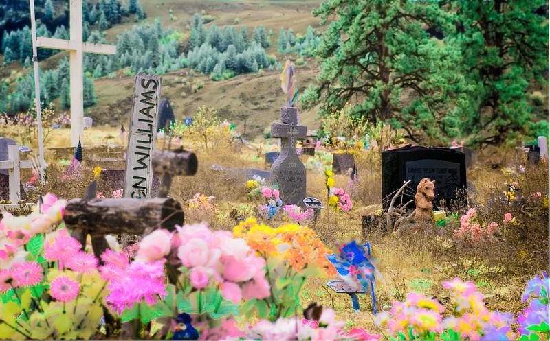 Cemetery, Nespelem, Washington, 2000