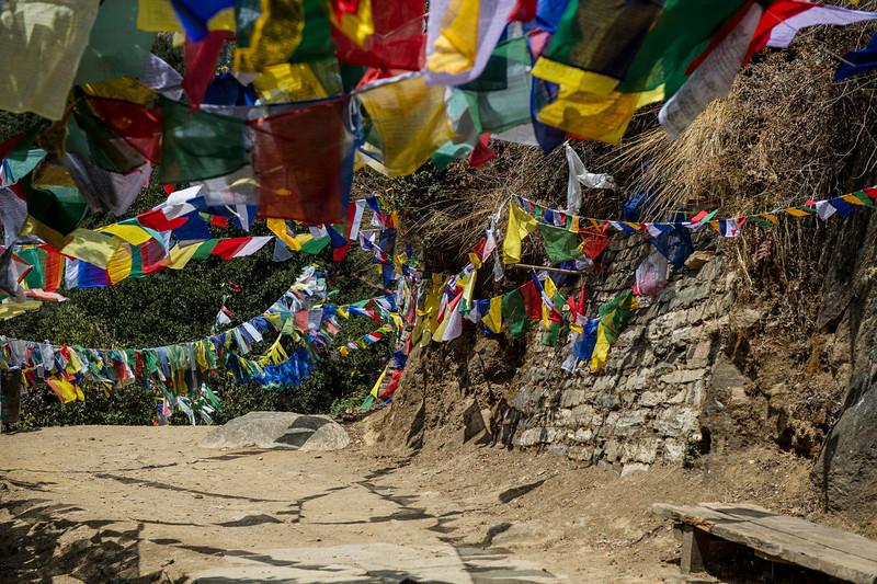 031313_TL_Bhutan_2013_114.jpg