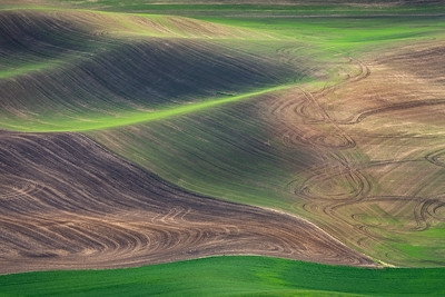 Loess and Lava