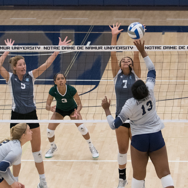 HPU Volleyball-92276.jpg