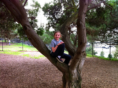 Katie In A Tree