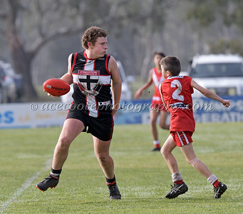 Junior Colts 2019 - Round 9 v Bordertown