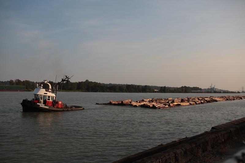 boat transporting logs fasera river.JPG
