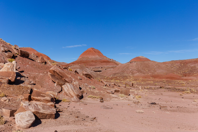 Badlands of the Painted Desert