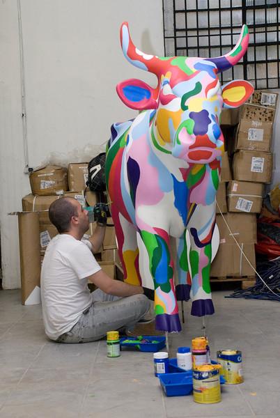 cow163.jpg