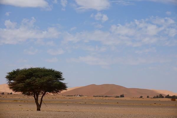 Morocco 2021