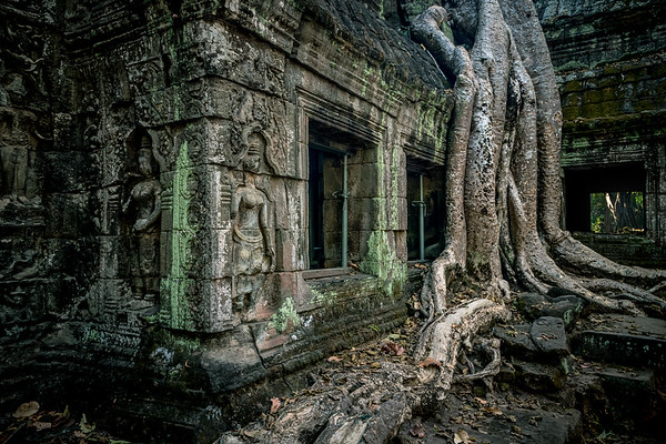 Hidden Angkor 1 - Temples Angkor Wat, Ta Prohm, Ta Nei