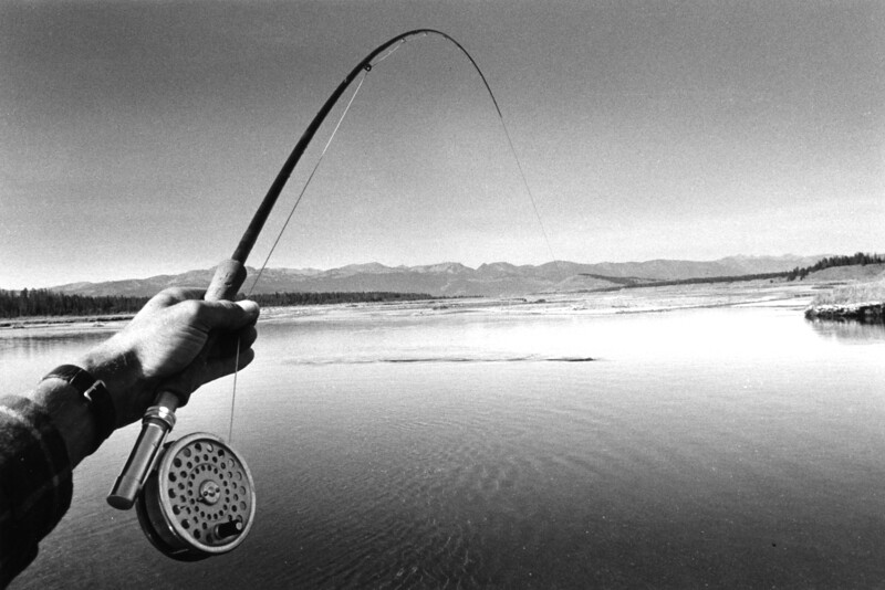 photographing my own rod hand with a trout on.  c1977