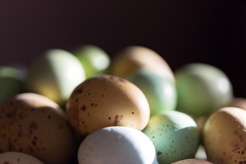 2014_03_04 Eggs 001.jpg