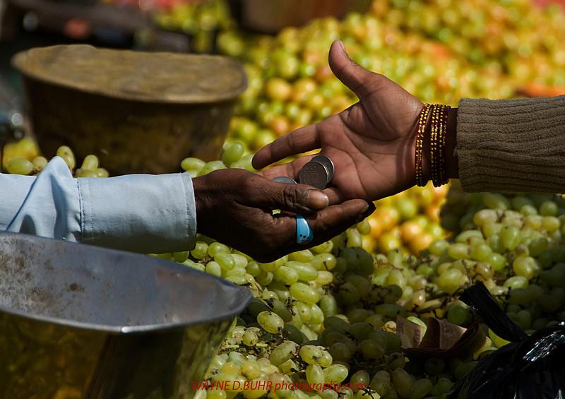 India2010-0211A-483A.jpg