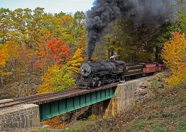 Steam Railroading