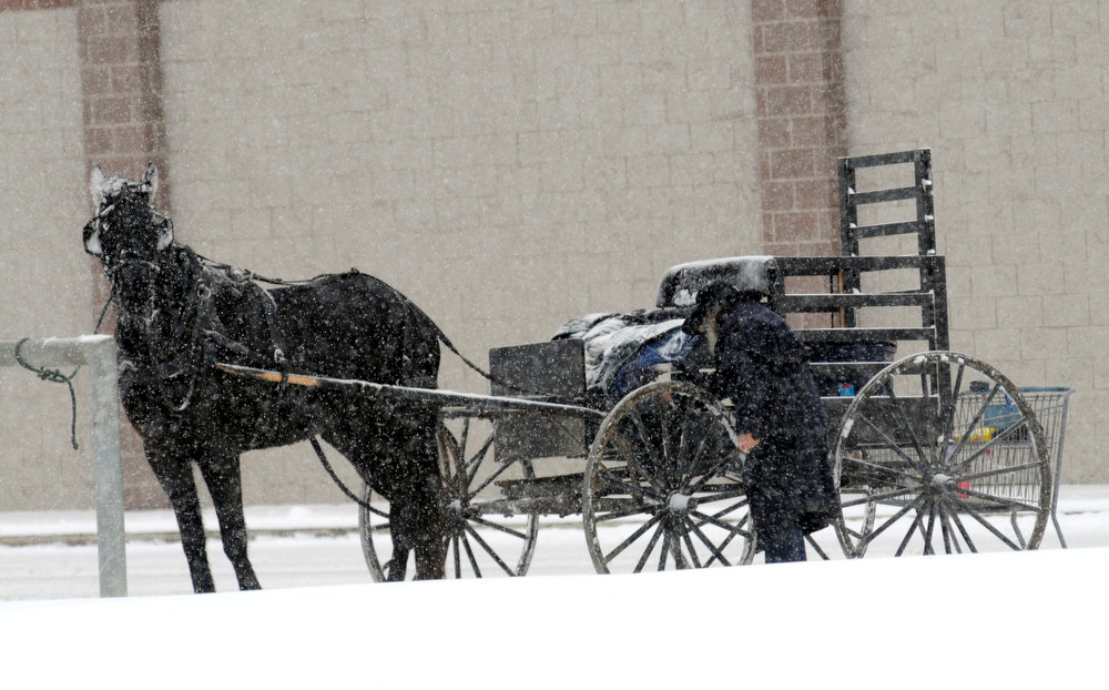 . An Amish man loads his wagon with his groceries from Aldi\'s in Ashland, Ohio, on Wednesday, Dec. 26, 2012. (AP Photo/Ashland Times-Gazette, Tom E. Puskar)