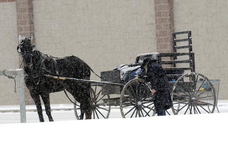 . An Amish man loads his wagon with his groceries from Aldi\'s in Ashland, Ohio, on Wednesday, Dec. 26, 2012. (AP Photo/Ashland Times-Gazette, Tom E. Puskar)