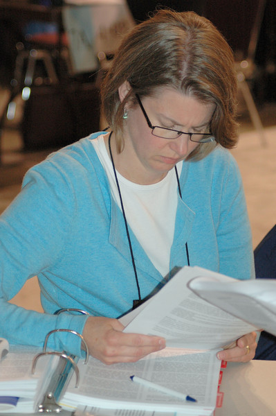 Pr. Maria Pederson, Isanti, MN reviews one of the amendments of the social statement.
