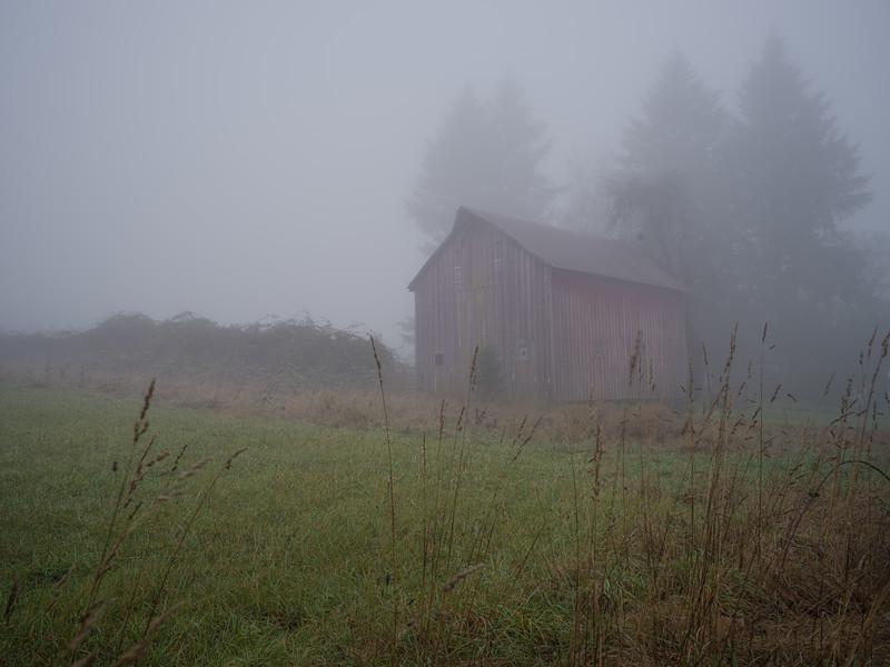 foggy barn - camas, wa