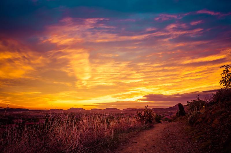 Desert Trail at Sunset in Black and White