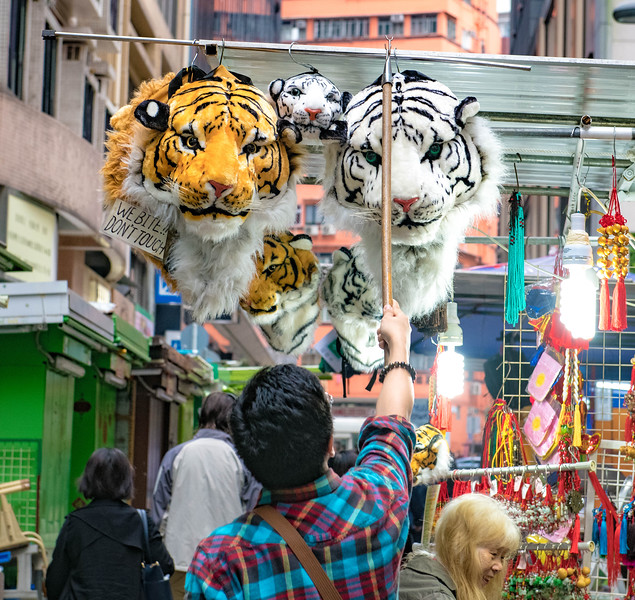 tigerrugby.com 04-01-19-1-19.jpg