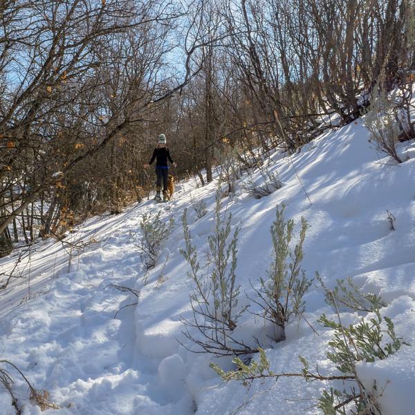 2018 Snowshoeing-29.jpg