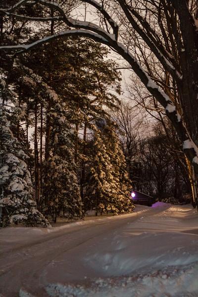 AIPPhoto-January2119-Image1.jpg