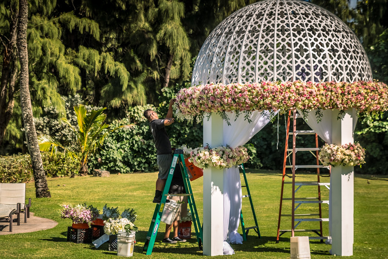 These workers put in roses all around the gazebo, one stem at a time.
