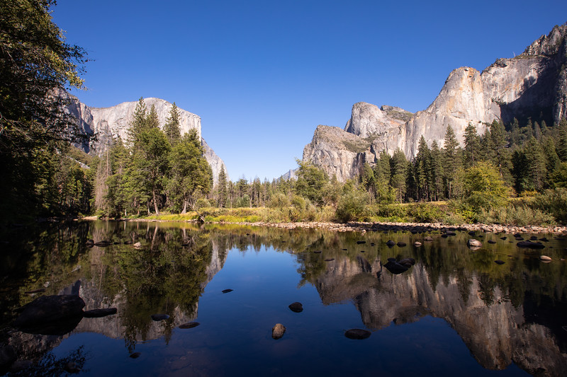 WVWS_Yosemite National Park-7069.jpg