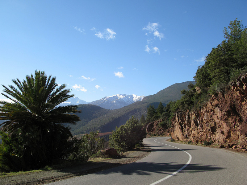 this is what we love: cycling with the view of snow capped mountains!