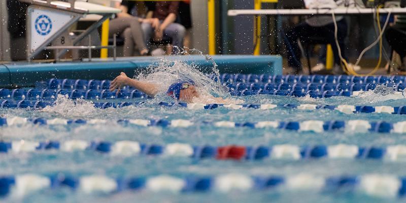 KSMetz2017Feb18__D5M2668.NEF_State Swim Finals.jpg