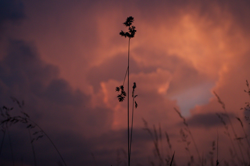 red-clouds-dawn_8777590033_o.jpg