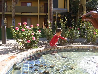 Palm Desert October 2008
