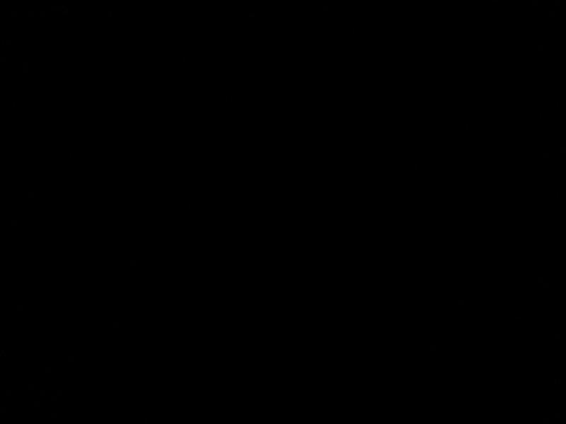 summerfall2016 293.JPG