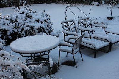 Backyard Snowy Scenes