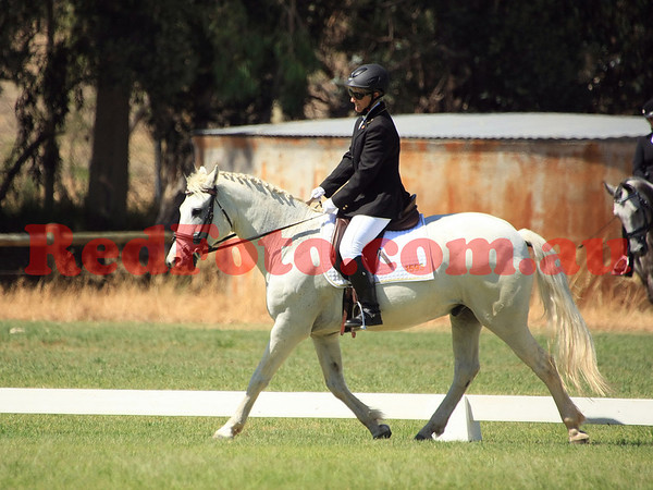 2014 02 01 Acres Dressage Series Grassed Arenas 10-00 till 11-00