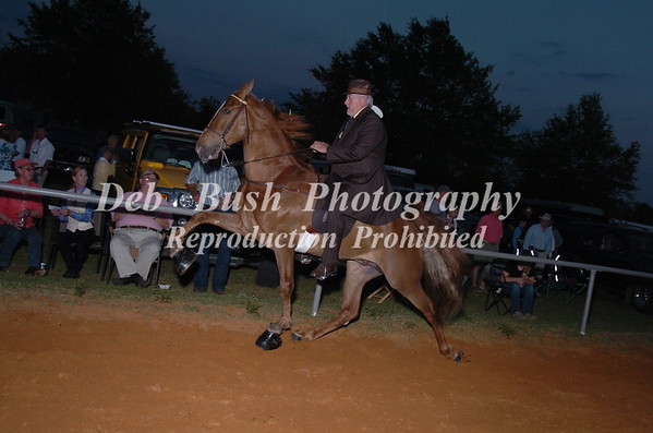 CLASS 22 WALKING 4 YR OLD AMATEUR SPECIALTY
